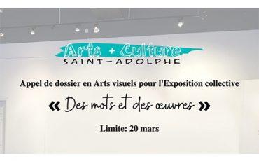 Appel de dossier pour l'exposition collective « Des mots et des œuvres »/ Limite 20 mars