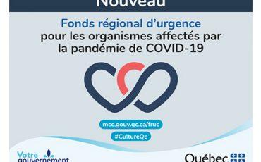 Fonds régional d'urgence pour les organismes affectés par la pandémie de COVID-19/Séance d'information